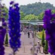 広島市植物公園 2018.05.22