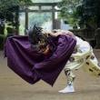 辺田の獅子舞
