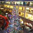 ファクトリーのクリスマスツリー