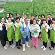 【Cooking/沖縄の食】カンダバー畑で撮影会♪