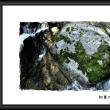 写力の気楽なカメラアングル  『  茶臼山高原  』