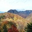 西沢渓谷の紅葉早かった!