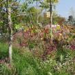 第34回全国都市緑化フェアはちおうじフェア