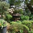 春の嵐in伊豆