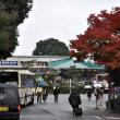 阪急嵐山駅 雨の紅葉
