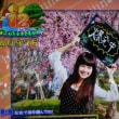 海物語JAPAN 40000発
