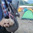 犬連れ登山