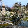 『旧吉田茂邸』 心字池