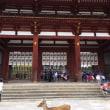 奈良・大阪の旅、楽しんできました~♪