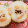 獅子柚子(^。^)y-.。o○…イイカオリ~(⋈◍>◡<◍)。✧♡