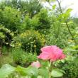 庭と生活のビューポイント