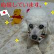 がんばれ~にっぽん ☆.+ ゜(oゝ∀・)ノ ぉぅ ゜+.☆
