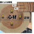 203.新人教育(木材の知識基本編):木材の構造と乾燥その1