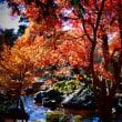 『紅葉狩り』 旧吉田茂邸
