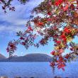 色づく秋を感じる