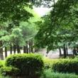 土曜日の駅前公園賛美 🌲 2018年5月19日