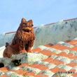 沖縄県シーサー探訪 ☆伝統的な屋根シーサー うるま市勝連