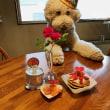 ●クッキー 3歳の誕生日!