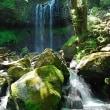 日光 マックラ滝
