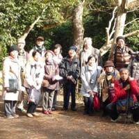 【関西中国】野鳥観察会