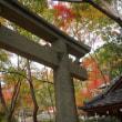 楓が茂る山間の天台宗の古刹「蓮華寺」。心静かに参拝を。