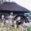 【古い写真】1990年09月 忍野