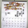 魚のカレンダーがありません