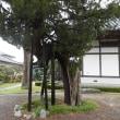 大津港のお寺さん