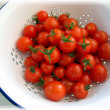 生命力×フルーツトマト