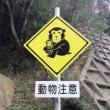 味宿きぬや 動物注意!