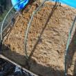 堆肥作り その後 なんで?