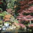 修禅寺庭園