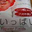 【花いっぱい】花柄プリントトイレットペーパー