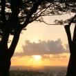 ●卯辰山見晴台から 夕陽と台風一過の青空?