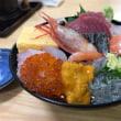 沼津港 Lunch MT09 TRACER
