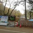 軽井沢のいろいろ 軽井沢の 「雲場池」 大規模工事完了!