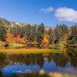 大雪高原温泉〜紅葉の沼めぐり(1)