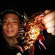メバリング in 横須賀  〜オフセットで強気に攻める〜