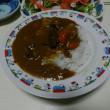 カレーライスと参鶏湯