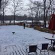 貸し切り新雪ドックラン🐾