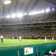 野球観戦!!