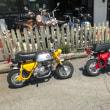 お客様のオートバイ・ホンダ モンキーA型