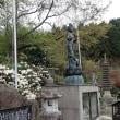 筱見四十八滝~八ヶ尾山 ツツジの花盛り(兵庫県篠山市)