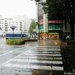 台風の影響 ~仙山線動いたらしいよ(*_*;
