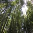京都 1泊2日 (1) 2017.7