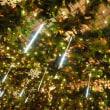 東京タワーウィンターファンタジー~オレンジ・イルミネーション~3