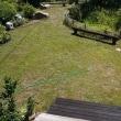 ボロボロの芝生