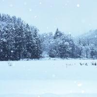 小雪ちらちらと