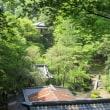 新緑の行道山から足利城址ハイキング♪~愛ちゃんパパが届ける故郷の風景(その1)~