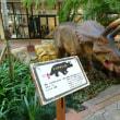 ブログについてお知らせ&恐竜